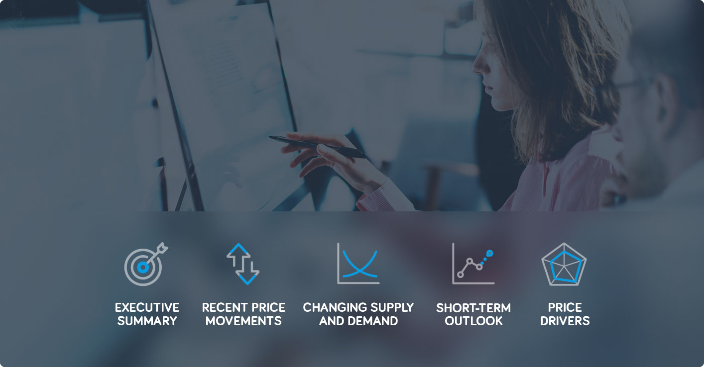 Market_Outlook_Launch