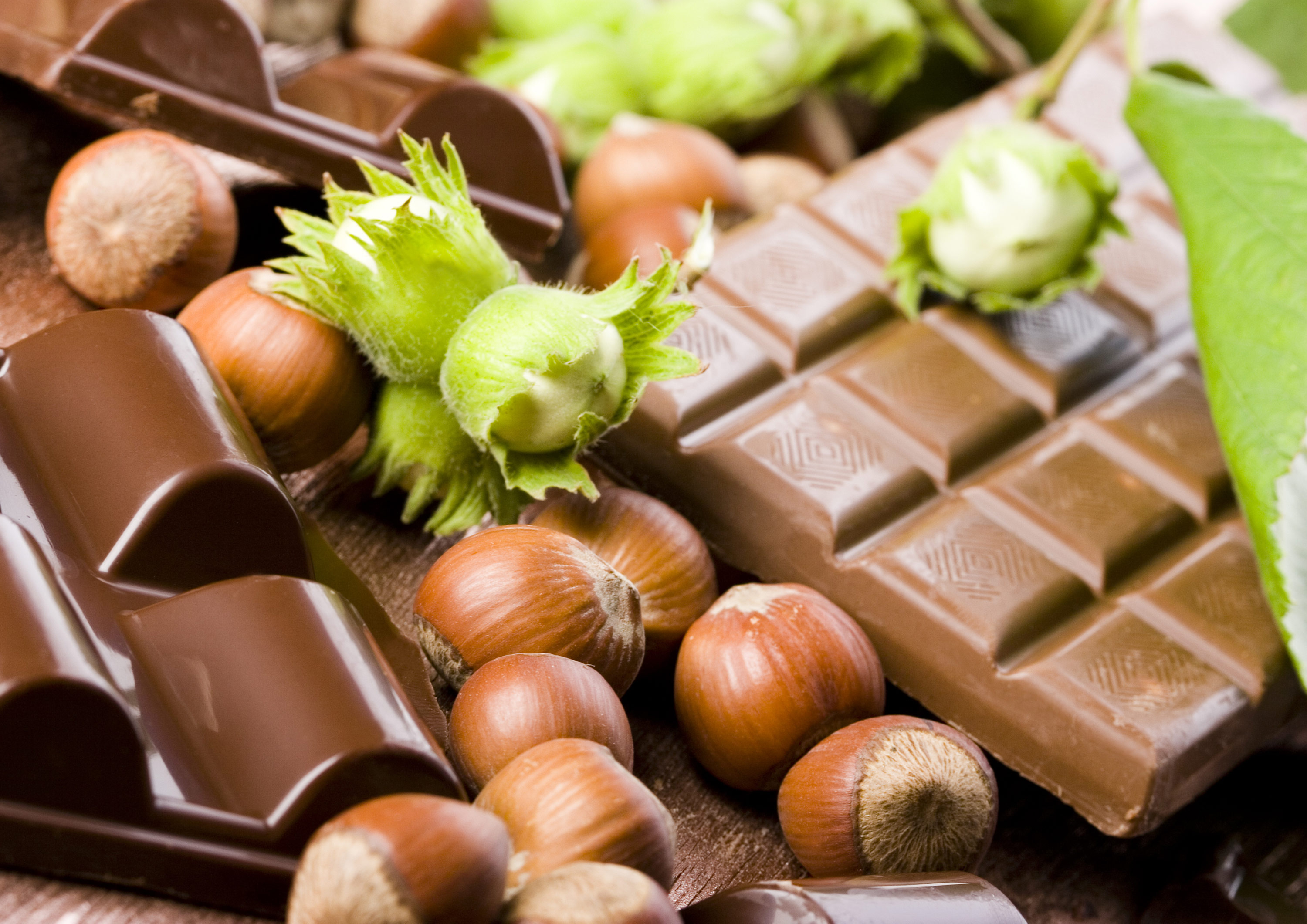 4066226_Chocolate_XL
