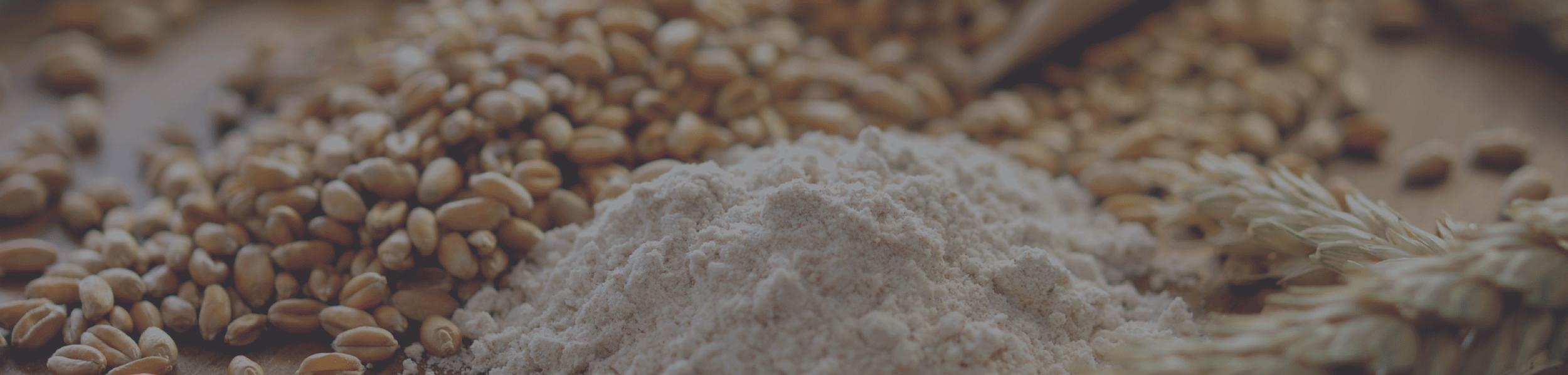 grains & feed