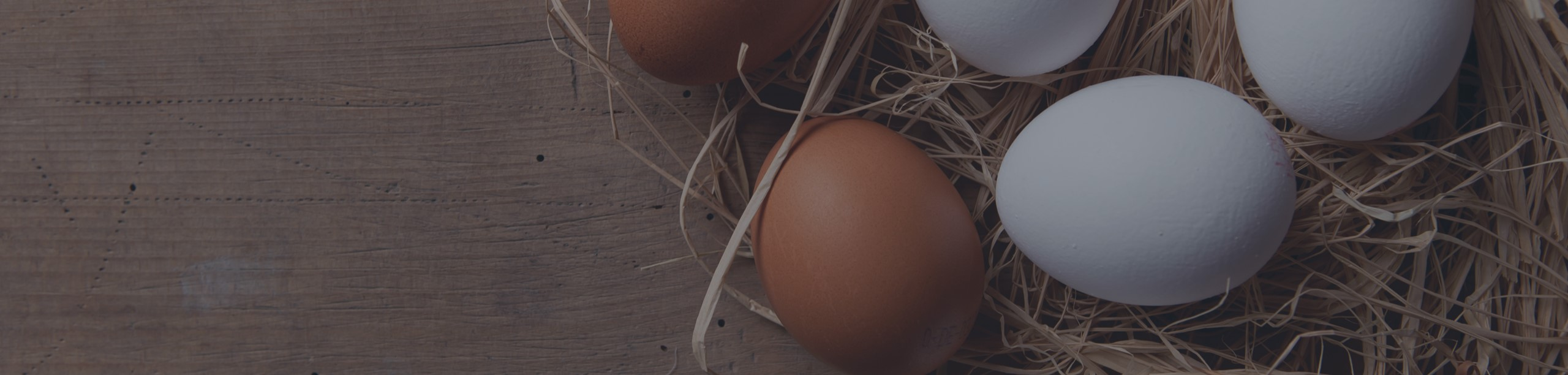 Eggs1-2