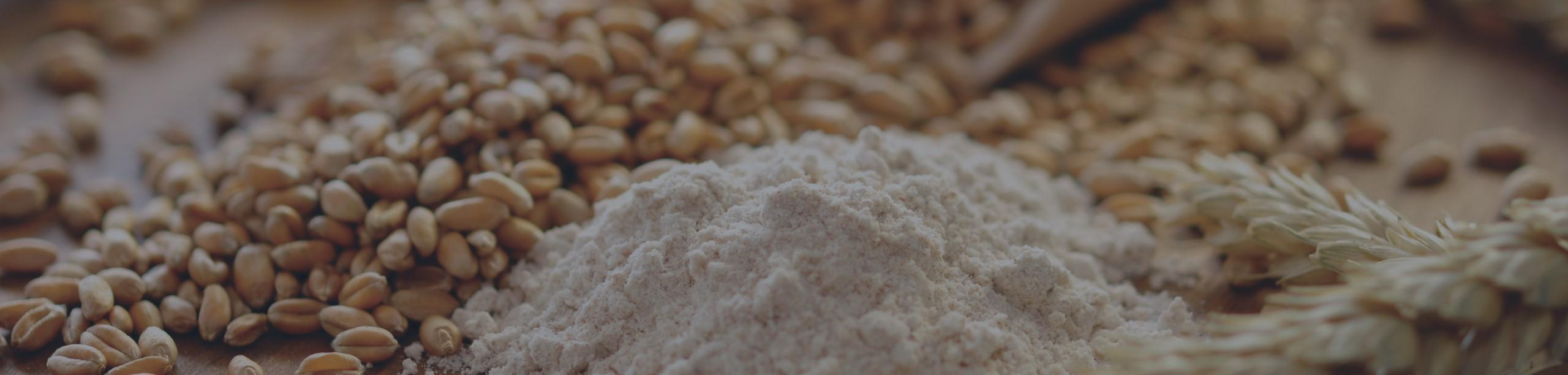 Grains1-8