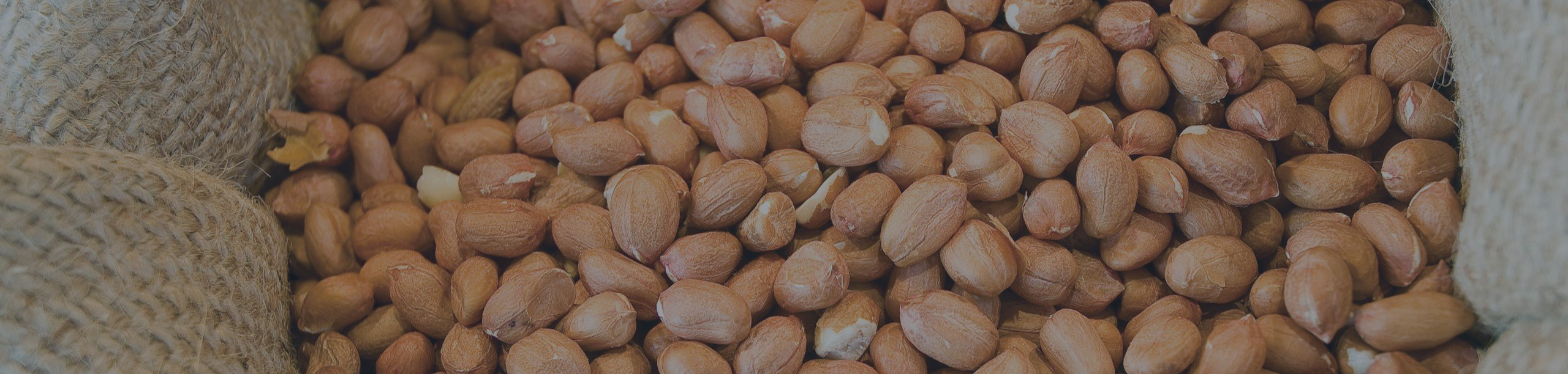 peanut or ground nut prices