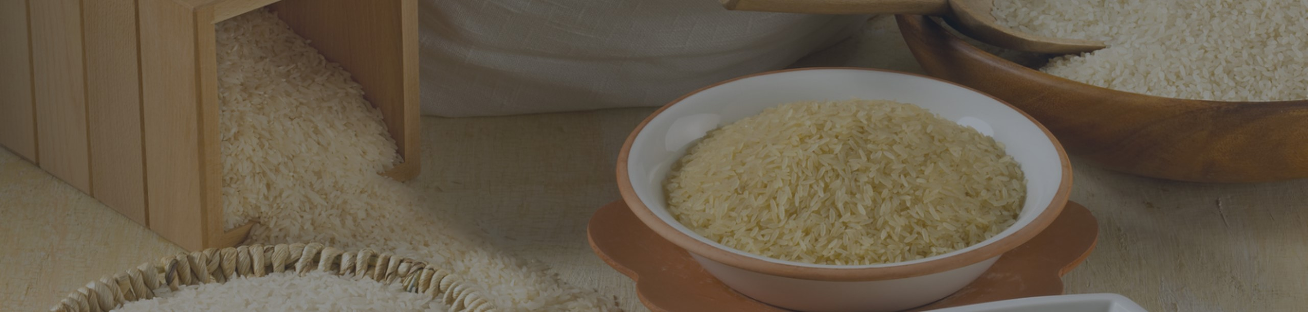Rice2-1